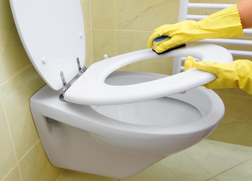 briller les toilettes